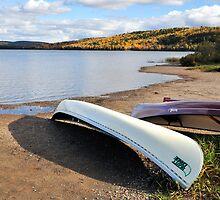 Lake of Two Rivers, Algonquin by Nancy Barrett