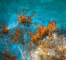 Leaves Of Gold by Nigel Finn