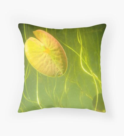 Another world,another vision Throw Pillow