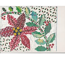 Poinsettia and Holly in the Snow Photographic Print