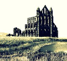 Whitby Abbey by charlylou