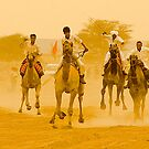 Camel Race by Mukesh Srivastava