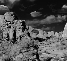 ARCHES NATIONAL PARK UTAH by Thomas Barker-Detwiler