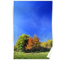 Summer pastel in vivid colors. Poster