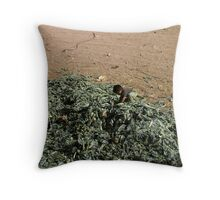 Boys are born from cabbages, aren't they ? Throw Pillow