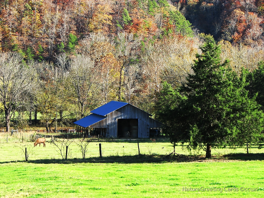 Historic Boxley Valley  by NatureGreeting Cards ©ccwri