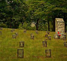 Marietta Confederate Cemetery by Scott Mitchell