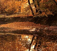 Autumn mirror lake. by demigod