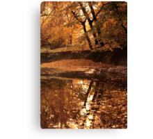Autumn mirror lake. Canvas Print