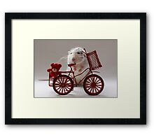 Going for a ride with my bear. Framed Print