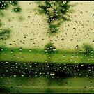 RAIN DROPS by manumint