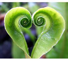 Nature's Green Heart Photographic Print