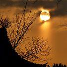 Sun Beam by Vittorio Zumpano