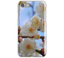 Plum Flowers iPhone Case/Skin