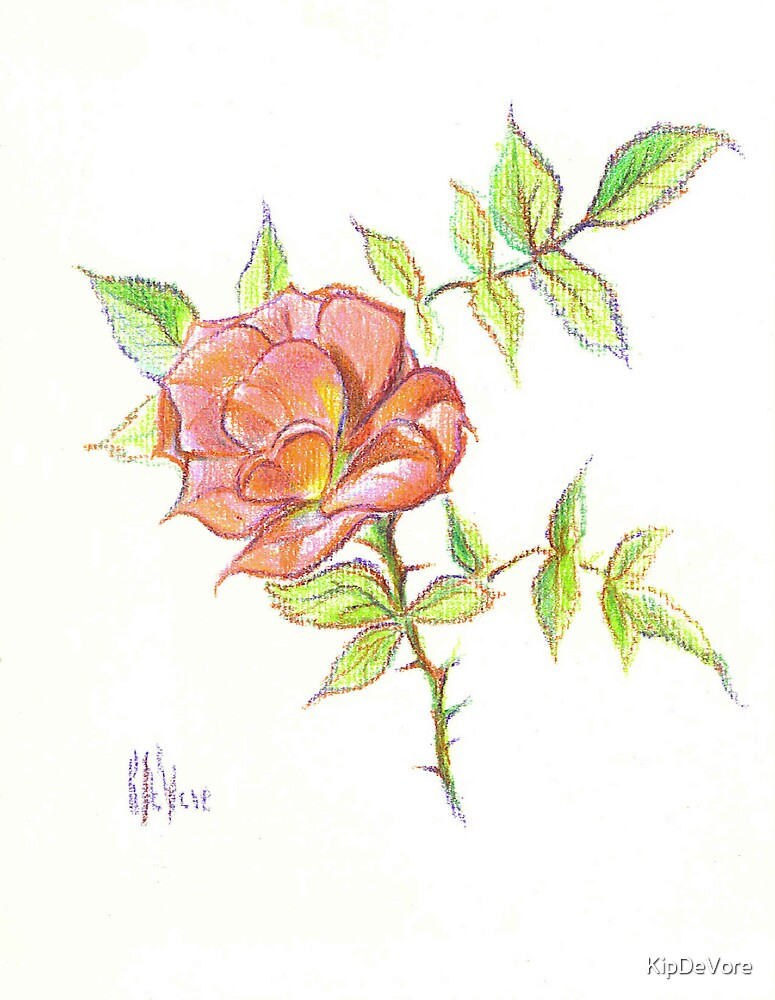 A Rose in Brigadoon by KipDeVore