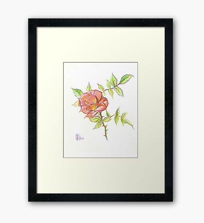 A Rose in Brigadoon Framed Print