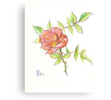 A Rose in Brigadoon Canvas Print