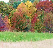 autumn layers by ANNABEL   S. ALENTON