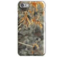 Last Days Of Summer iPhone Case/Skin