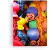 Parrot Toy Canvas Print