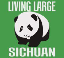 Sichuan by IMPACTEES