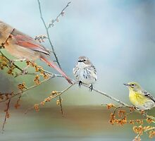 Feathered Friends by Bonnie T.  Barry