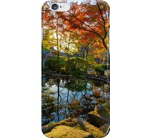 Painted Pond iPhone Case/Skin