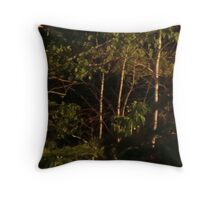 Darkness at nightfall invites you to dance Throw Pillow