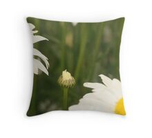 She sleeps in her cage, till the sun invites her out. Throw Pillow