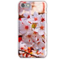 Blossom Bunch iPhone Case/Skin
