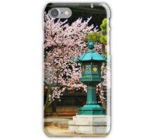The Green Lanturn iPhone Case/Skin