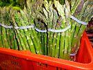 Asparagus Greens by amak