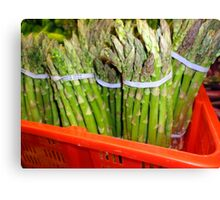 Asparagus Greens Canvas Print