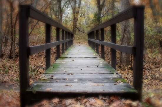 Life is a Journey by Tim Wright