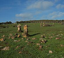 Field of Stones by roger smith
