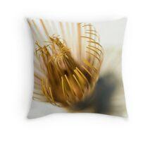 Whisk Throw Pillow