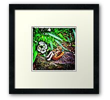 Sleeping Fairy Framed Print