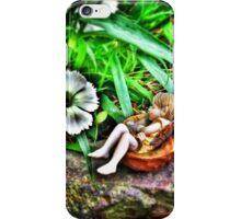 Sleeping Fairy iPhone Case/Skin
