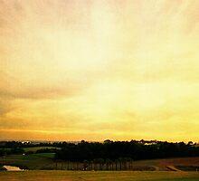 one golden sky by Juilee  Pryor