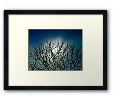 Moon Stalk Framed Print