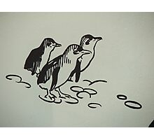 Penguin Mural Photographic Print