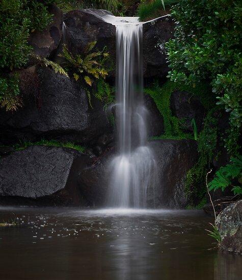 Mount Victoria Waterfall by Crispin  Gardner IPA