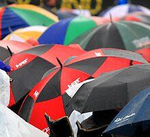 Just sitting in the rain - Bathurst 2009 by GeoffSporne