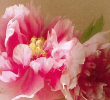 Raspberry Damask by Fay270