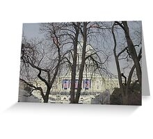 """Capital Building Through a Veil of Trees"" Greeting Card"
