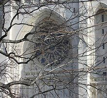 """National Cathedral Window veiled with Branches"" by Lauren Heather Lay"