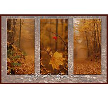 Autumn Tryp Photographic Print