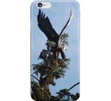 X-Wing (Bald Eagle) iPhone Case/Skin