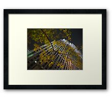 Fall on Rock Framed Print