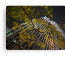 Fall on Rock Canvas Print